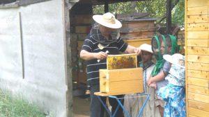 SEDLISKÁ: Včelári odprezentujú počas medového dňa svoju prácu i výrobky
