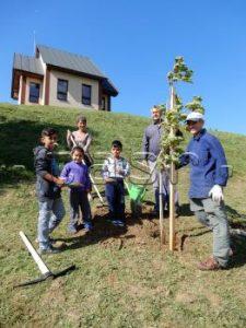 JASTRABIE N/TOPĽOU: Dobrovoľníci vysadili pri kaplnke niekoľko okrasných stromov